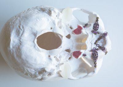 Skull-1-white